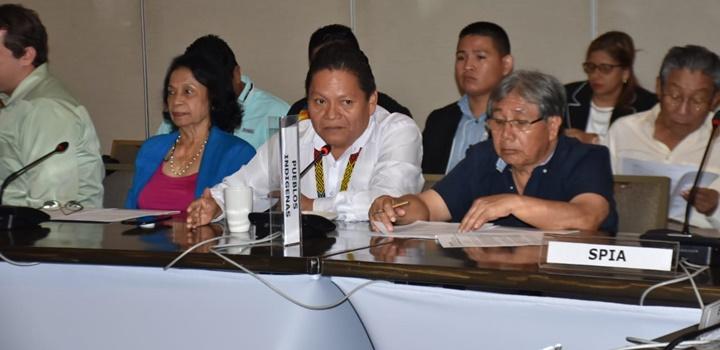 Consejeros de la Concertación Nacional para el Desarrollo (5)