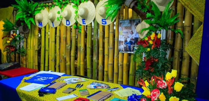 IX Festival Nacional de El Sombrero Pintao (8)