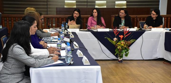 Ministra afirma que el Mides continuará ejecutando acciones para proteger los Derechos de la Mujer (4)