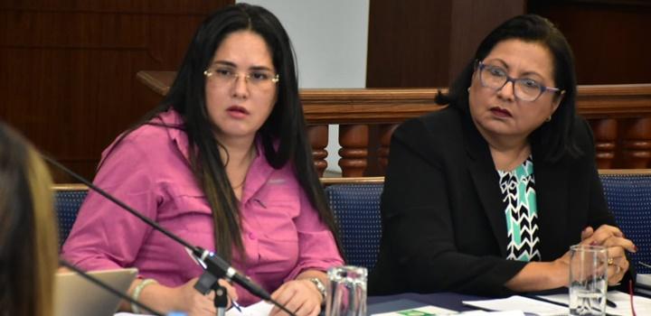 Ministra afirma que el Mides continuará ejecutando acciones para proteger los Derechos de la Mujer (7)