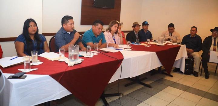 Reunión entre la Coordinadora Nacional de los Pueblos Indígenas e Instituciones Públicas (3)